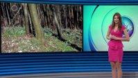 vlcsnap-2015-03-27-03h27m37s177.jpg