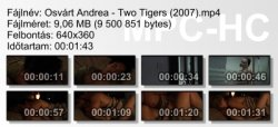 Osvárt Andrea - Two Tigers (2007) ikon.jpg