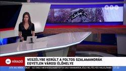 ATV Híradó. 2020. 1 hét (1).jpg