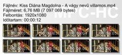 Kiss Diána Magdolna - A vágy nevű villamos ikon.jpg