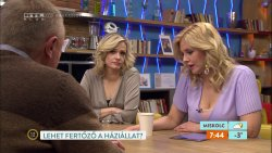 RTL Reggeli. 2020.04.03  (2).jpg