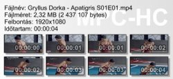 Gryllus Dorka - Apatigris S01E01 ikon.jpg