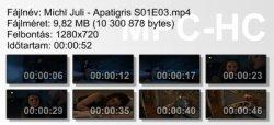 Michl Juli - Apatigris S01E03 ikon.jpg