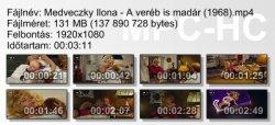 Medveczky Ilona - A veréb is madár ikon.jpg