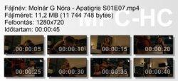 Molnár G Nóra - Apatigris S01E07 ikon.jpg