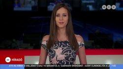 ATV Híradó. 2020. 08.03-07  (26).jpg