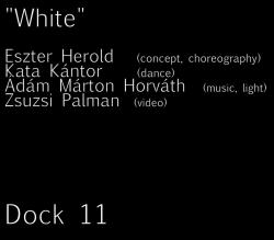 white plakát.png