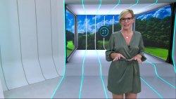 vlcsnap-2020-09-06-16h39m40s735.jpg