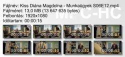 Kiss Diána Magdolna - Munkaügyek S06E12 ikon.jpg