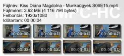 Kiss Diána Magdolna - Munkaügyek S06E15 ikon.jpg
