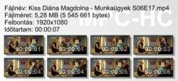 Kiss Diána Magdolna - Munkaügyek S06E17 ikon.jpg