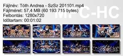 Tóth Andrea - SzSz 201101 ikon.jpg