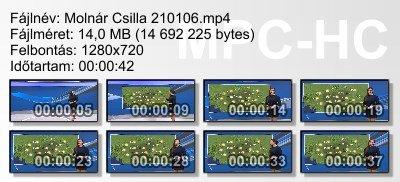 Molnár Csilla 210106 ikon.jpg