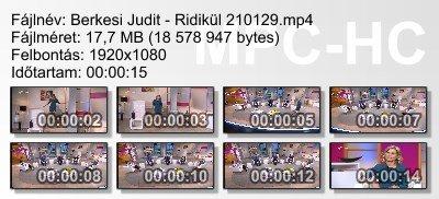Berkesi Judit - Ridikül 210129 ikon.jpg