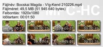 Bocskai Magda - Víg-Kend 210226 ikon.jpg