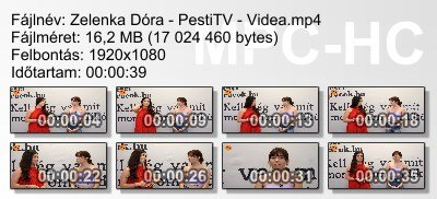 Zelenka Dóra - PestiTV - Videa ikon.jpg