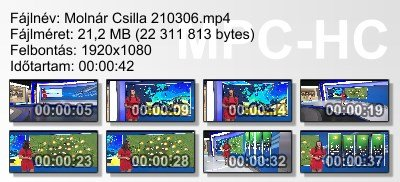 Molnár Csilla 210306 ikon.jpg