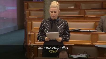 Juhász Hajnalka - Parlamenti felszólalás - 2021. március 222021-03-26 07-36-26-586-2.png