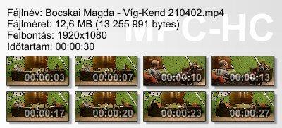 Bocskai Magda - Víg-Kend 210402 ikon.jpg
