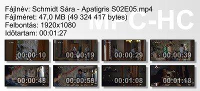 Schmidt Sára - Apatigris S02E05 ikon.jpg