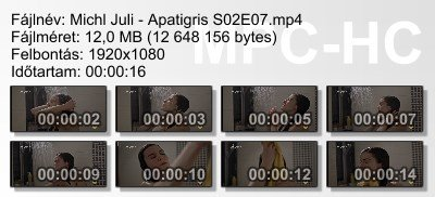 Michl Juli - Apatigris S02E07 ikon.jpg