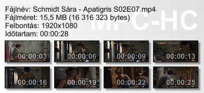 Schmidt Sára - Apatigris S02E07 ikon.jpg