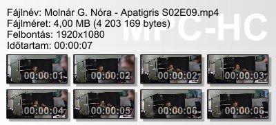 Molnár G. Nóra - Apatigris S02E09 ikon.jpg