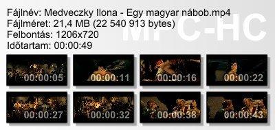 Medveczky Ilona - Egy magyar nábob ikon.jpg