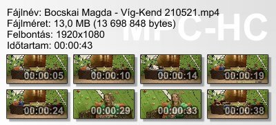 Bocskai Magda - Víg-Kend 210521 ikon.jpg