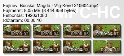 Bocskai Magda - Víg-Kend 210604 ikon.jpg