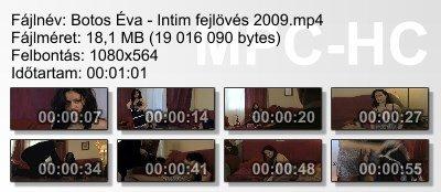 Botos Éva - Intim fejlövés 2009 ikon.jpg