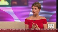 Mokka - tv2, 2013. augusztus 06._12.jpg