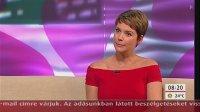 Mokka - tv2, 2013. augusztus 06._17.jpg